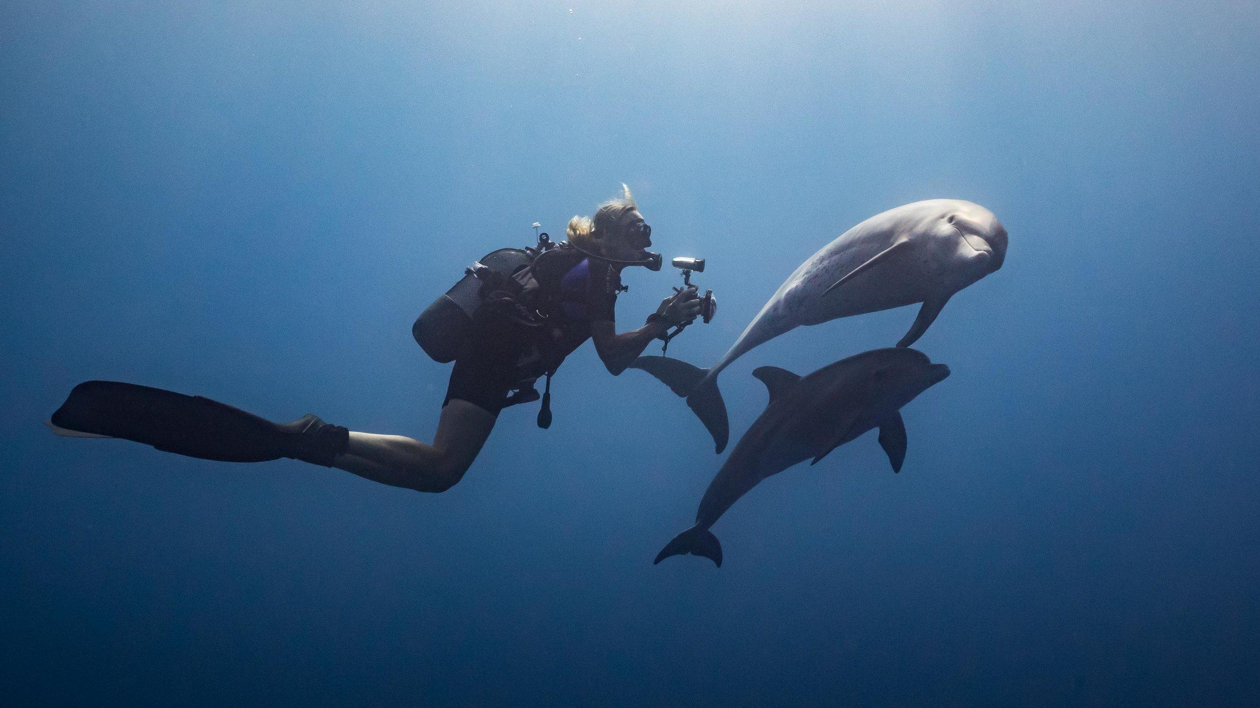 Marine conservation specialist Angela Ziltener