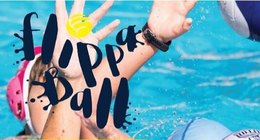flippaball logo1.JPG