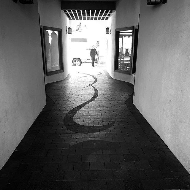 #blackandwhite #blackandwhitephotography #ojai #california