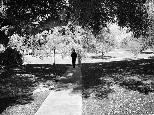 #ojai #california #blackandwhite #blackandwhitephotography