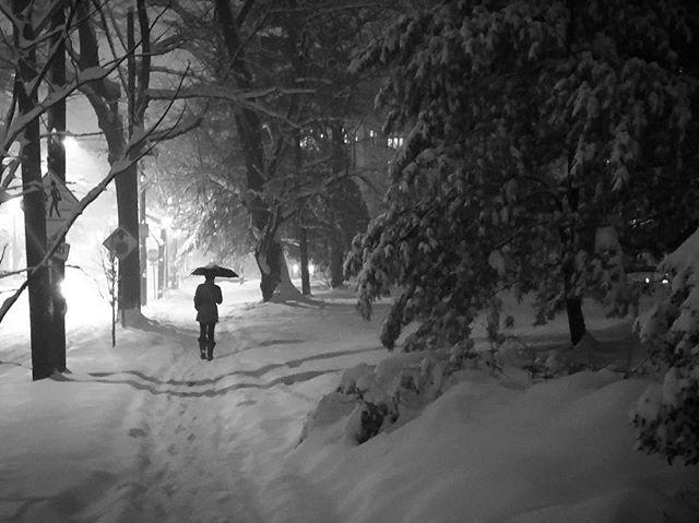#snowynight #washingtondc