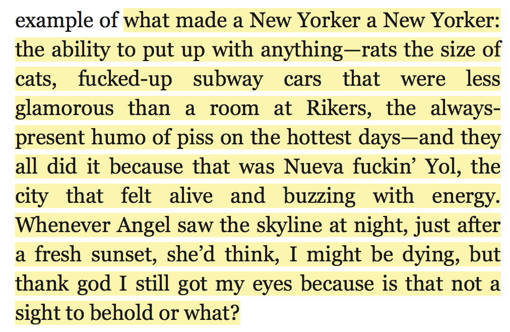 """...what made a New Yorker a New Yorker: the ability to put up with anything—rats the size of cats, fucked-up subway cars that were less glamorous than a room at Rikers, the always-present humo of piss on the hottest days—and they all did it because that was Nueva fuckin' Yol, the city that felt alive and buzzing with energy. Whenever Angel saw the skyline at night, just after a fresh sunset, she'd think, I might be dying, but thank god I still got my eyes because is that not a sight to behold or what?"