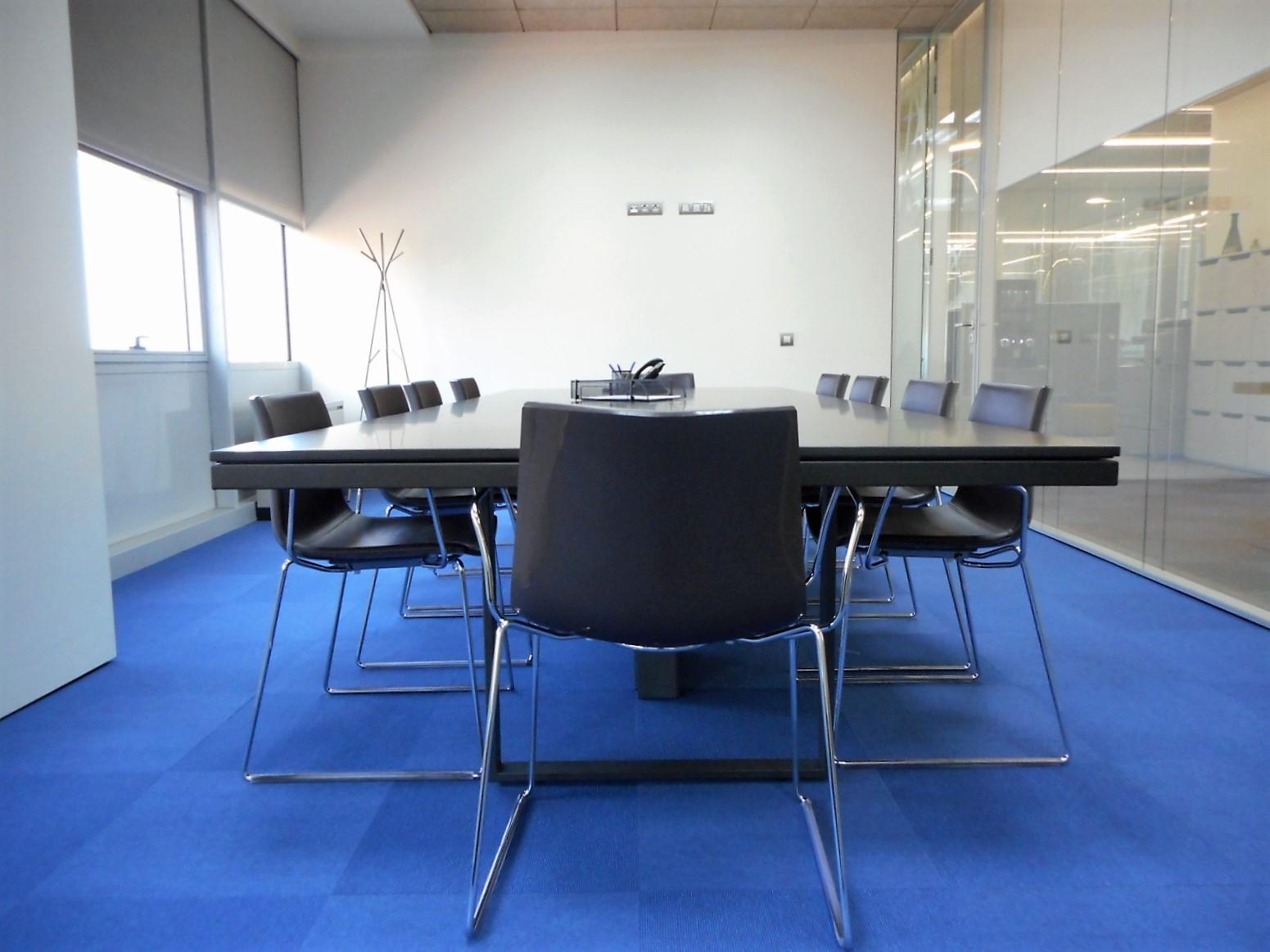 Recursos de apoyo en el desarrollo de la reunión - Todas cuentan, como mínimo, con sistemas de videoconferencia y con un excelente acceso a Internet.