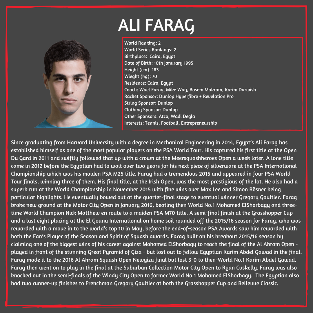 Player Profile Ali.png