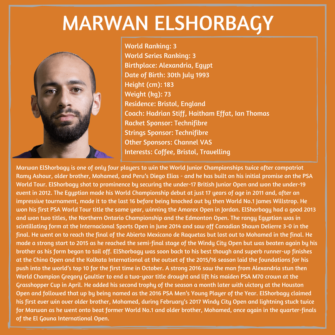 Player Profile Marwan.png