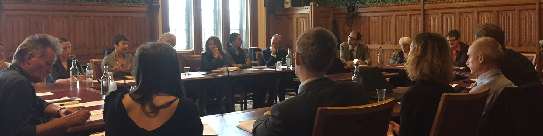 APPG photo cropped 3.png