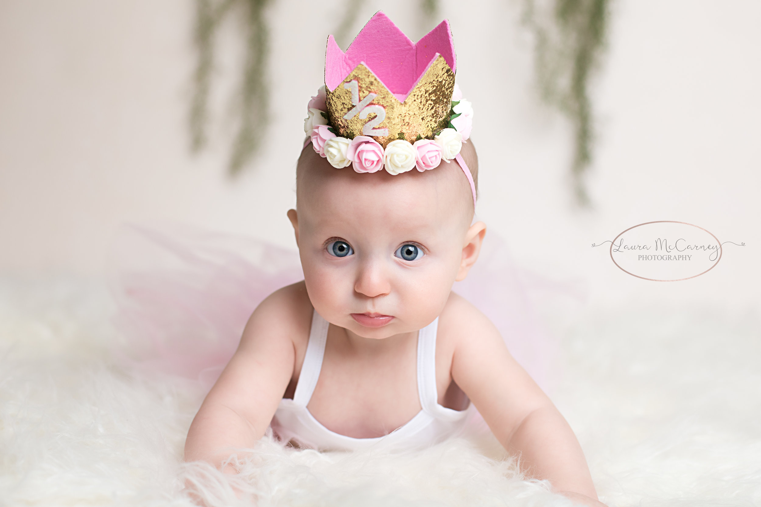 6 month milestone session, montgomery photographer, newborn photographer, childrens photographer, bucks county photographer, newborn photo session, milestone session