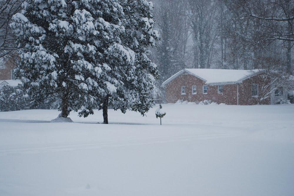 winter-wonderland-61.jpg