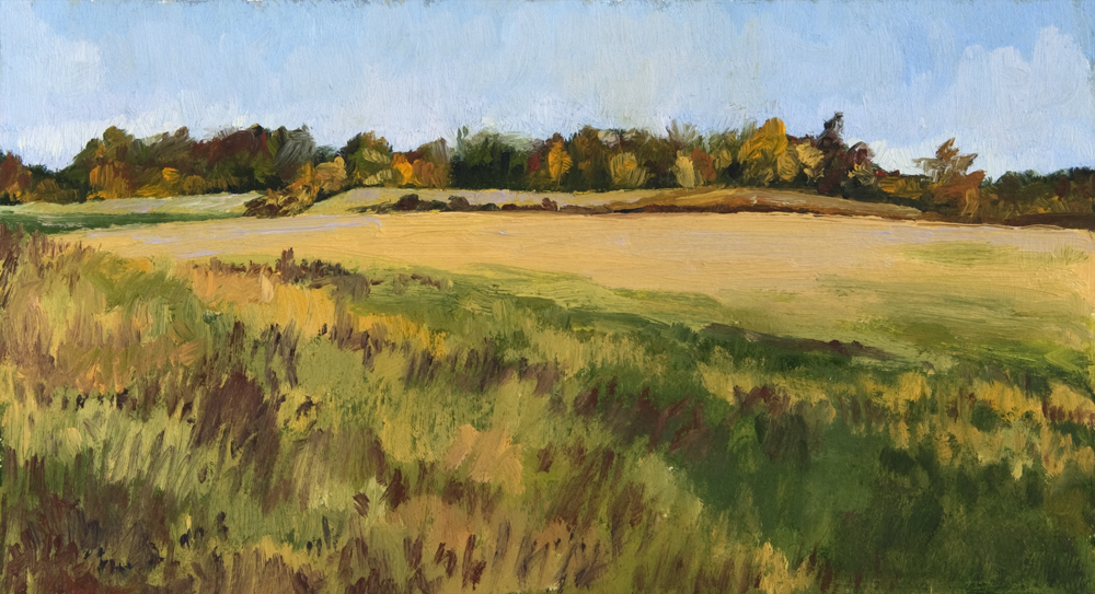 20130211-015-Loudoun-county-fields.jpg