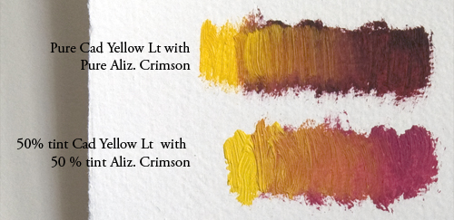 Aliz-Crimson-with-Cad-Yellow-lt