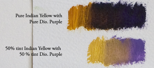 Dio-purple-with-indian-yellow
