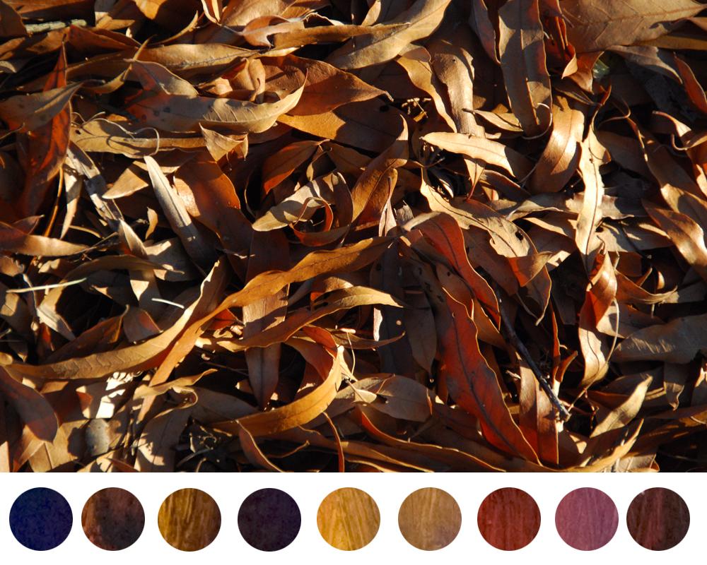 dioxazine-purple-mixtures-dried-leaves