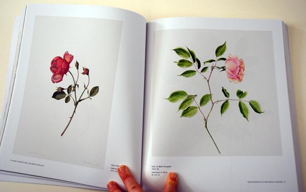 fav-art-books-rory-mcewen-2