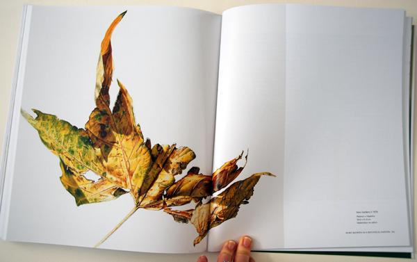 fav-art-books-rory-mcewen-7