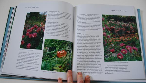 fav-art-books-monets-passion-03-05