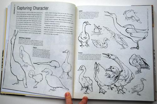 fav-art-books-simblet-sketchbook-06