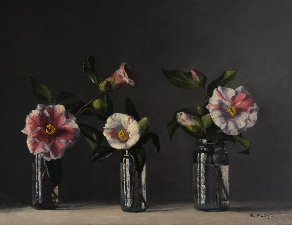 Camellias by Elizabeth Floyd, 14 x 18 inches, oil on linen