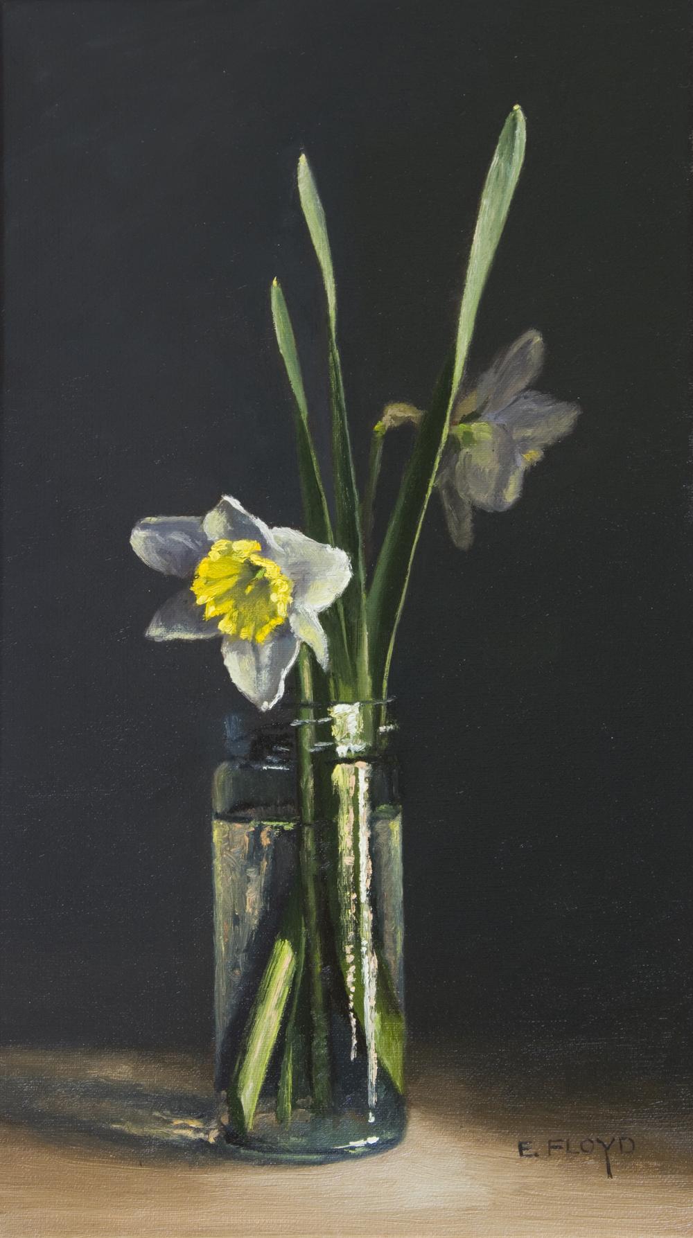 20170305-002-Narcissus-Ice-Follies-16x9.jpg