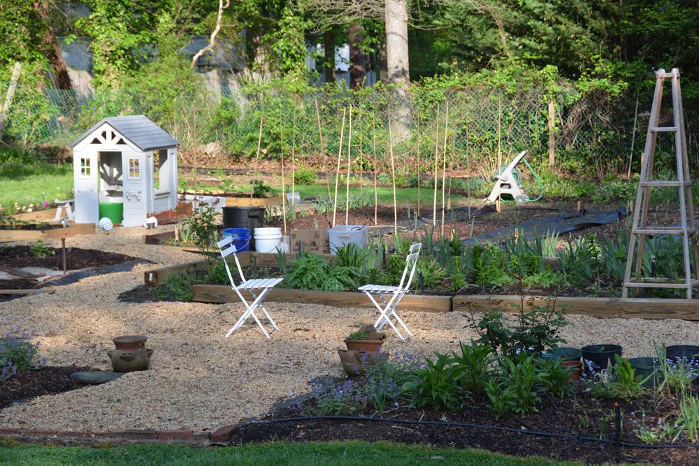 20170504-garden-update-09.jpg