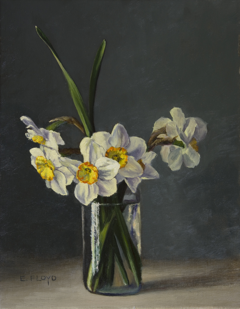 20170408-005-Ringtone-and-Flower-Record-Narcissus.jpg