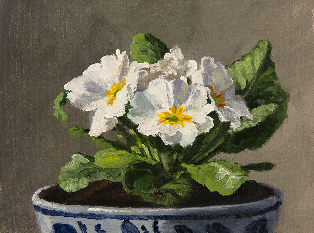 Day 22:  Primrose in Bowl, 8 x 6 inches, oil on linen panel, ( Available )