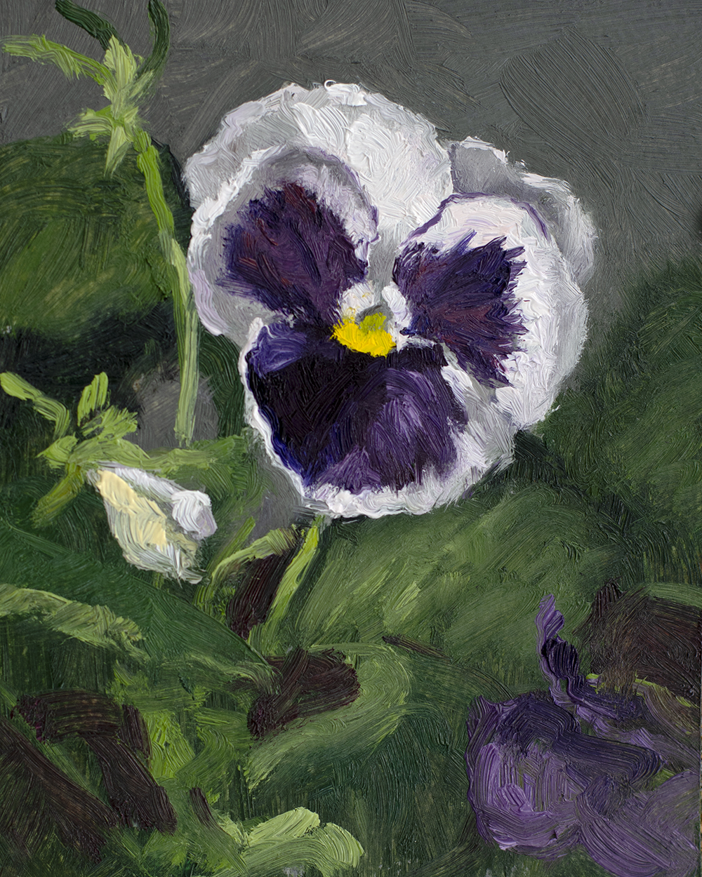Day 64: Colossus Pansy with Purple Blotch, 5x4 inches, oil on panel, ( Available )