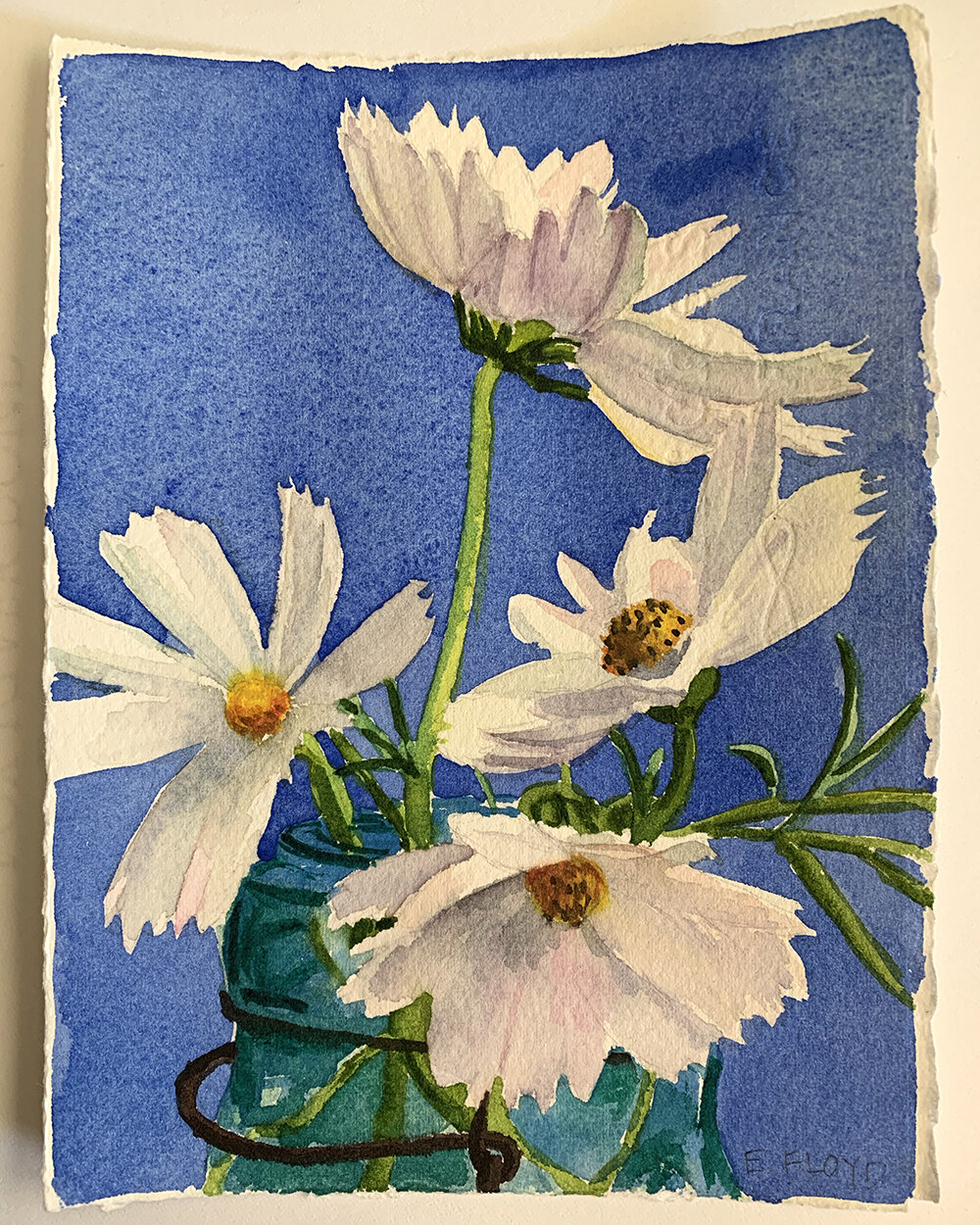 Day 231, August 19, 2019: White Cosmos on Blue Background (SOLD). This was my first successful piece after the surgery.