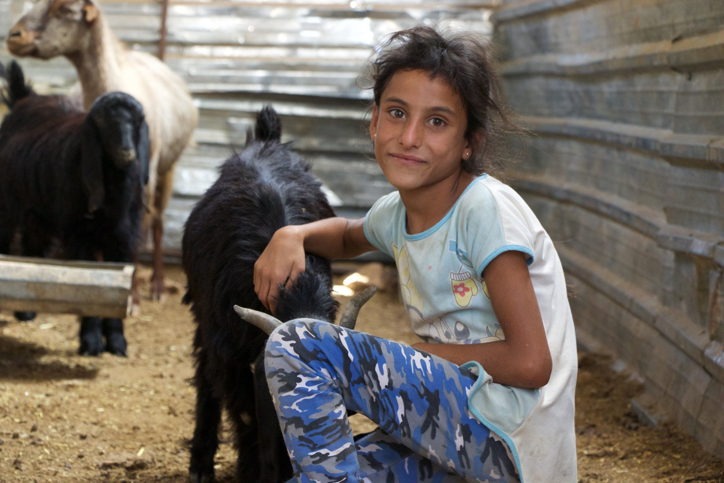 Ranine, 7, Hiba's younger sister, with her favorite goat.