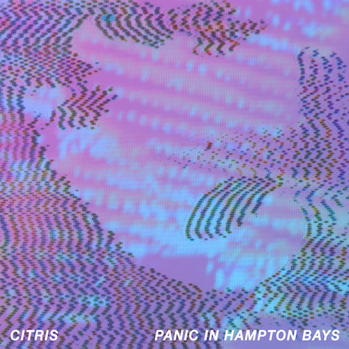 Citris- Panic in Hampton Bays (2017)