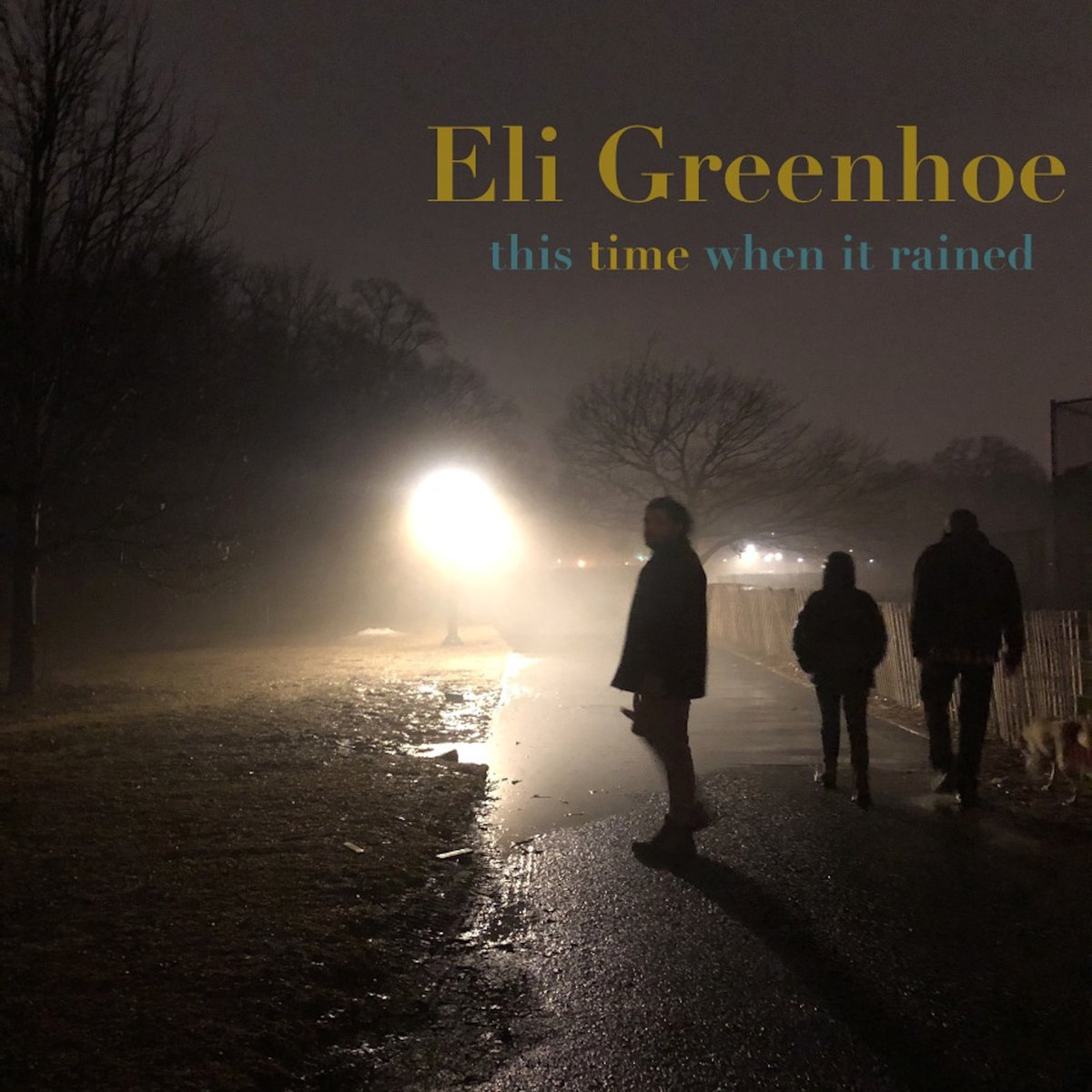 Eli Greenhoe- This Time When It Rained (2019)