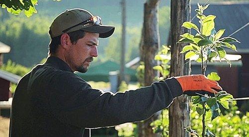Rich Perkins - Ridgedale permaculture