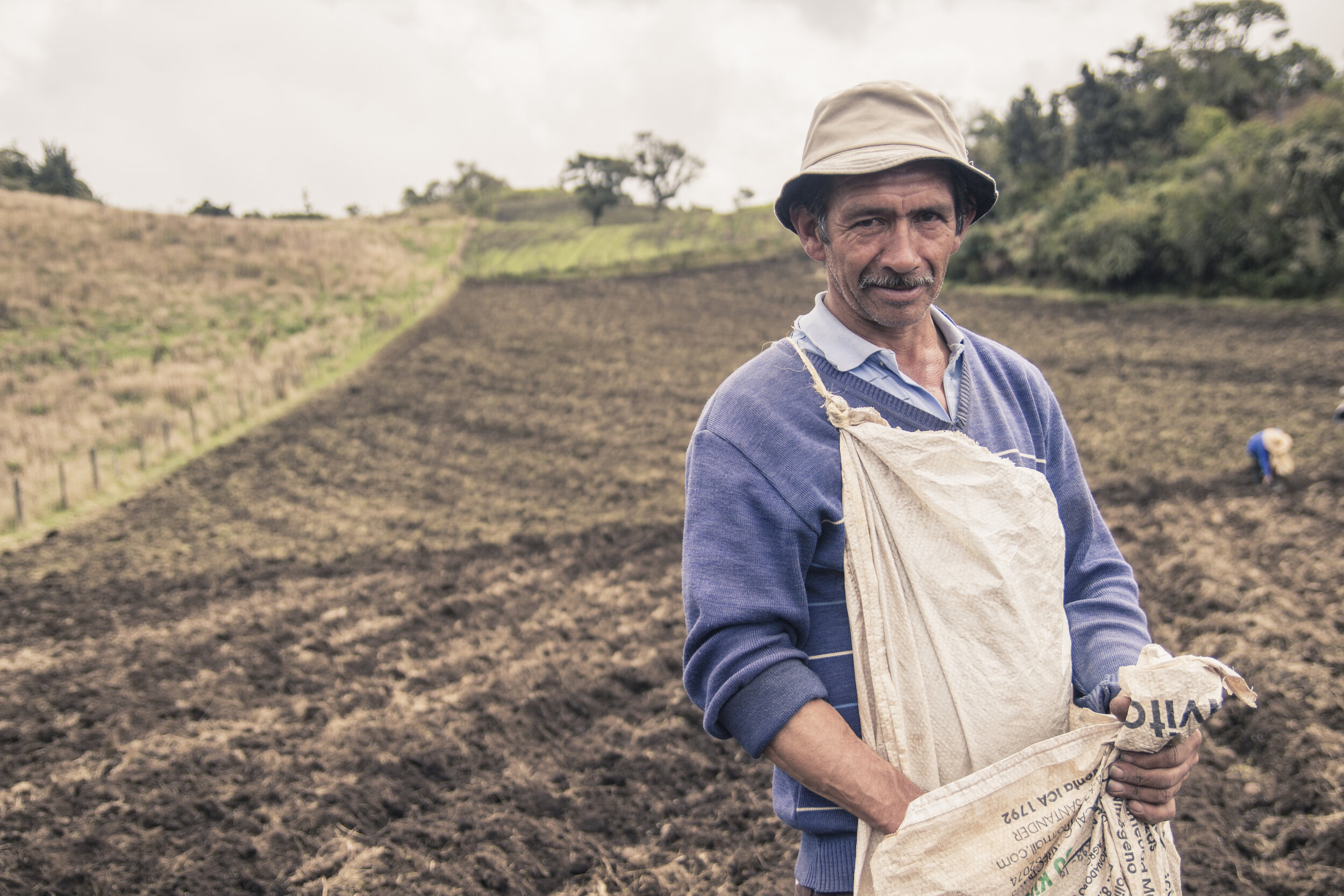 YSB Portfolio: Campo Vivo. A social business improving the livelihoods of local farmers and their families living in low socioeconomic communities in rural Colombia