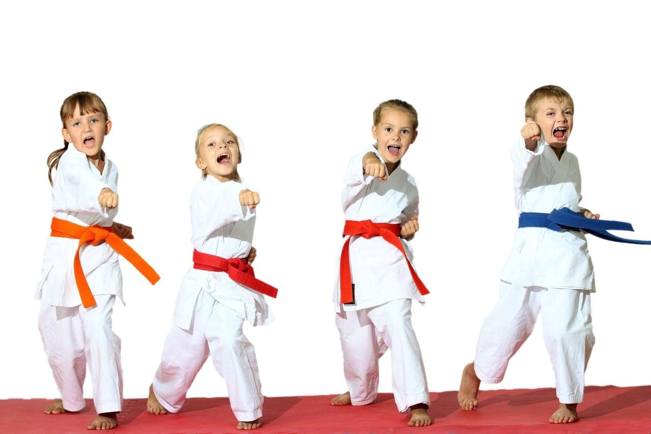 Stage de Kung Fu - 6 à 12 ans - Dimanche 7 avril de 14h à 15h30