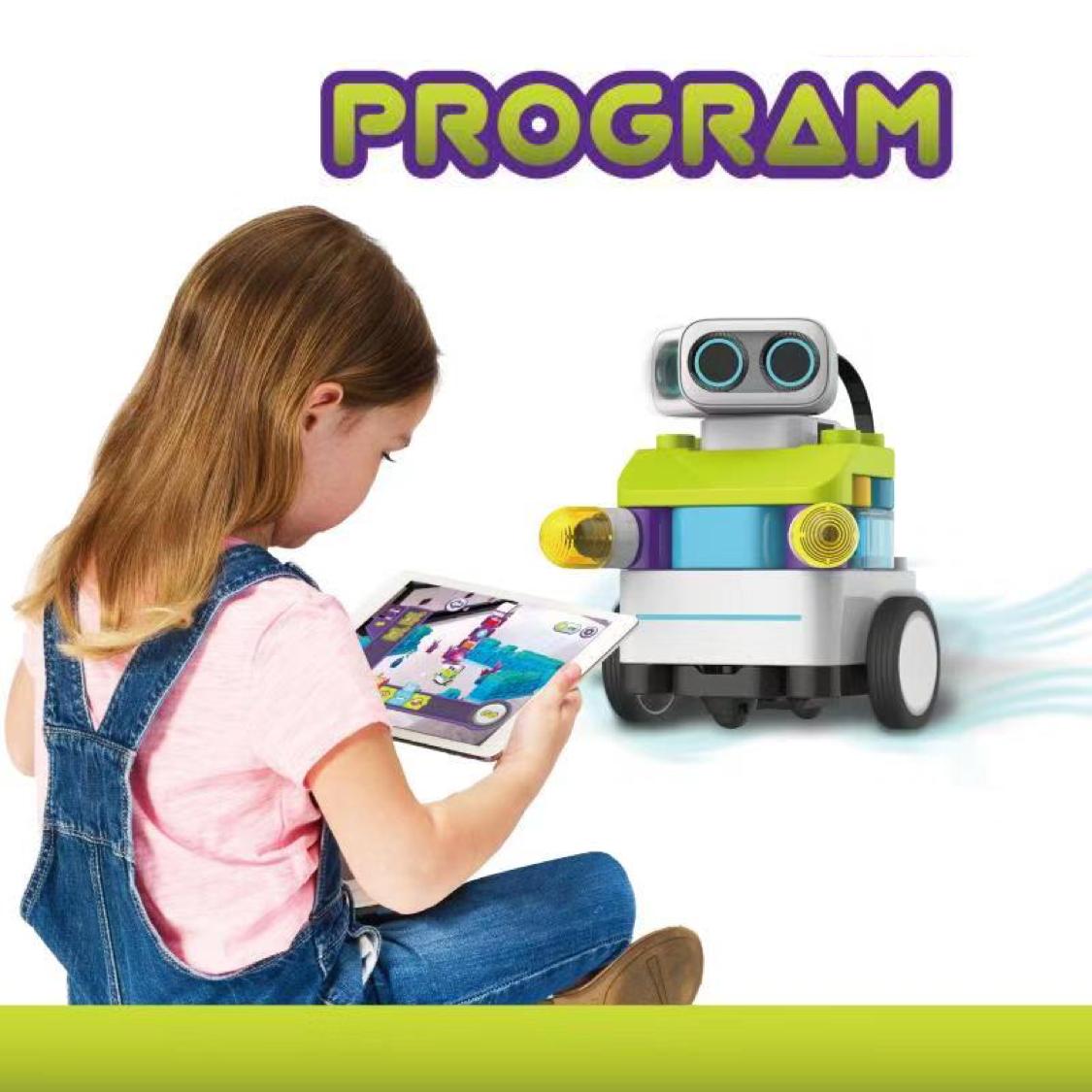 Copy of PaiBotz Program v.2.png