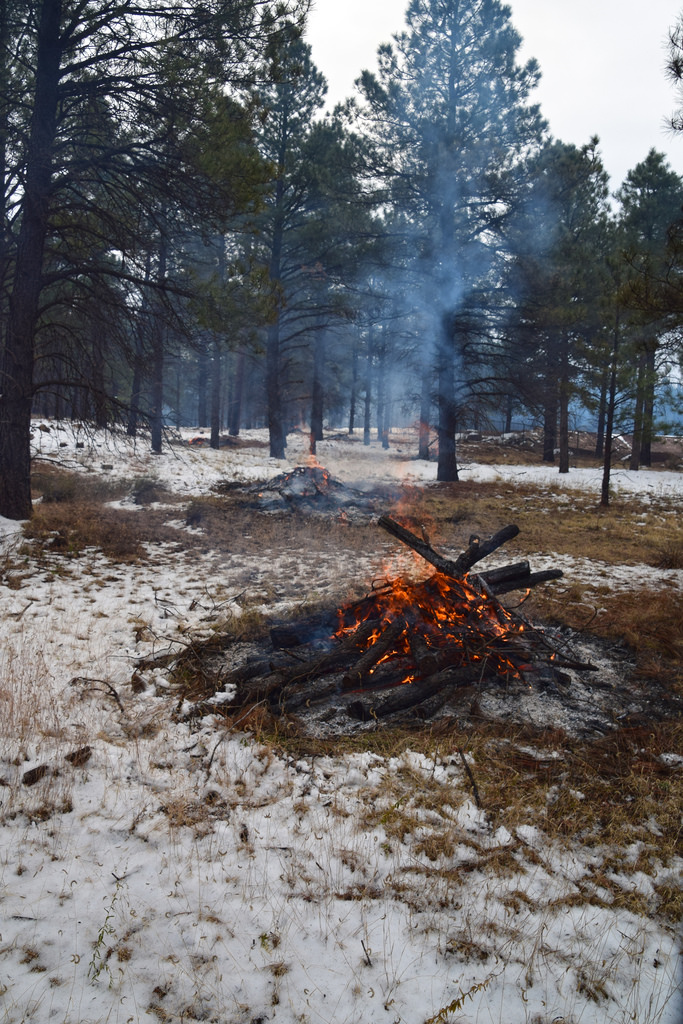 Burning requiring a burn permit.