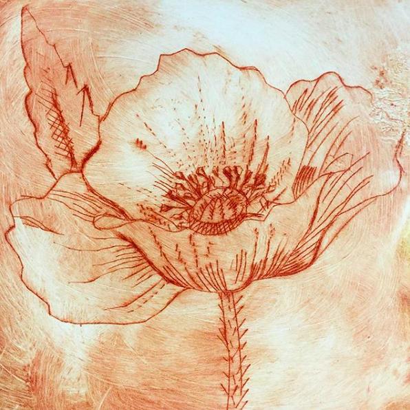 Ornamental Poppy