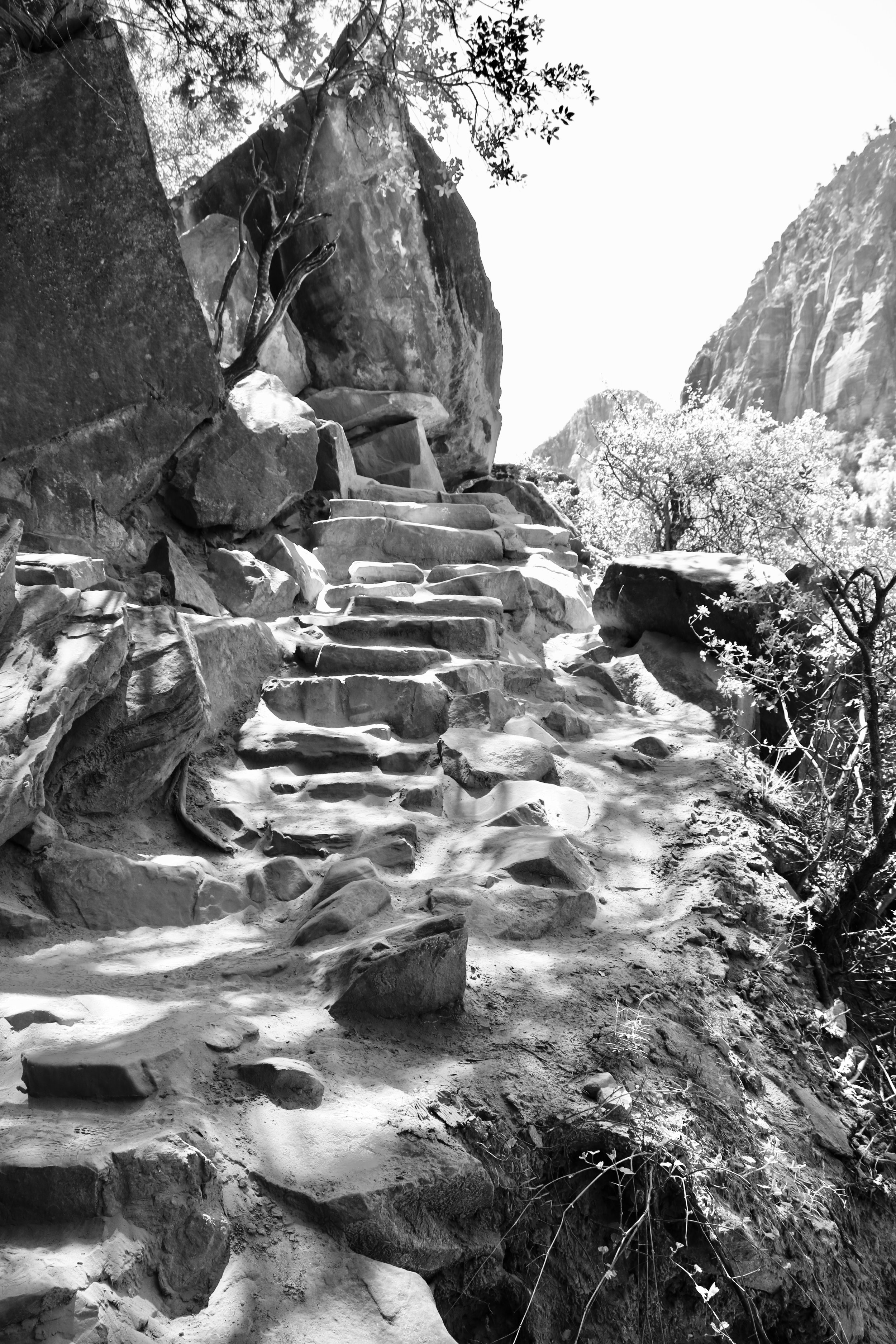 Stepping Stones to Emerald Pools - Zion