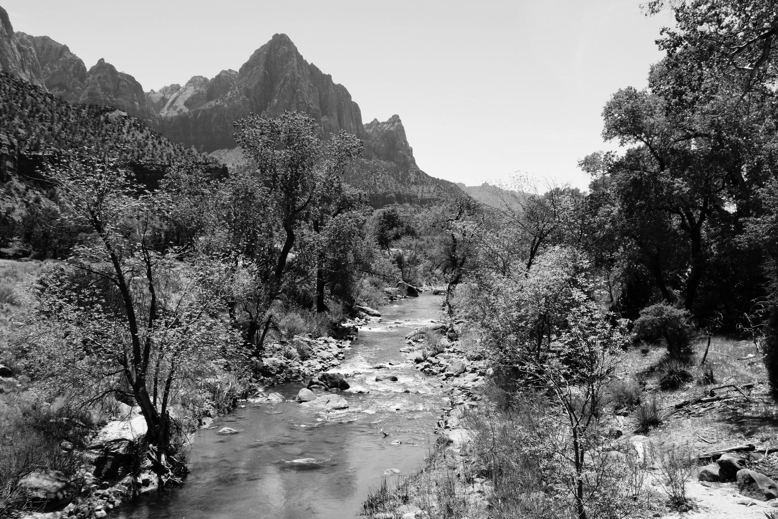 View from Kayenta Trail - Zion