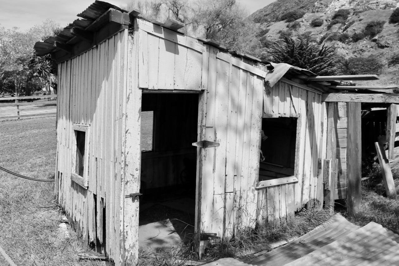 Remains of Homesteaders - Santa Cruz Island, Channel Islands National Park