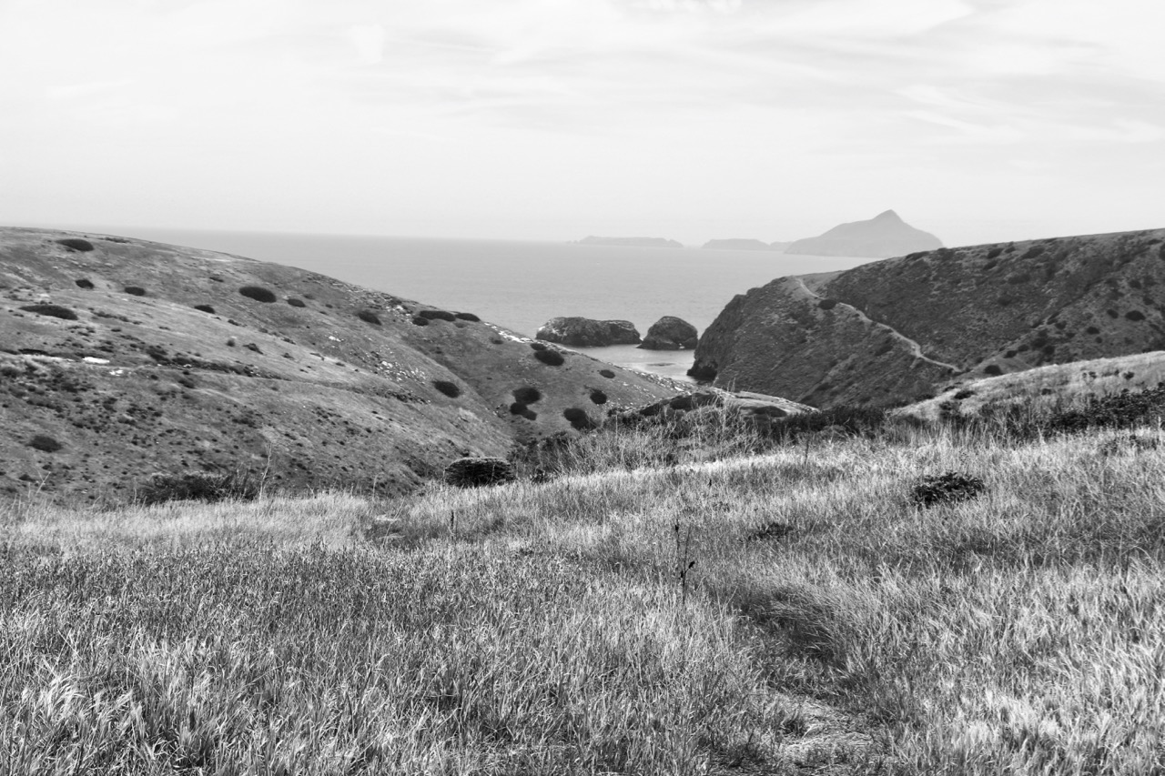 Rolling Hills to the Sea - Santa Cruz Island, Channel Islands National Park