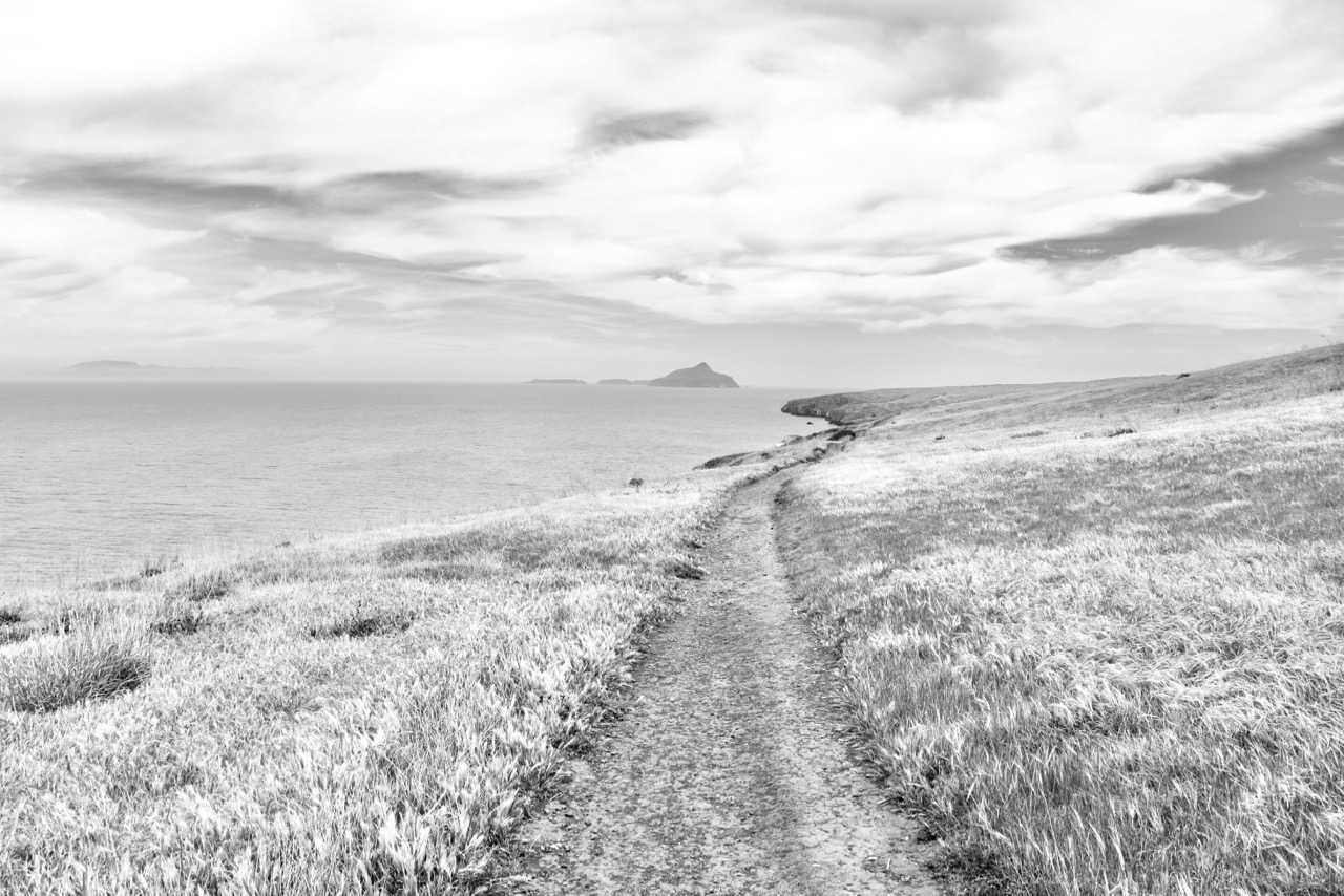 Follow Your Path - Santa Cruz Island, Channel Islands National Park