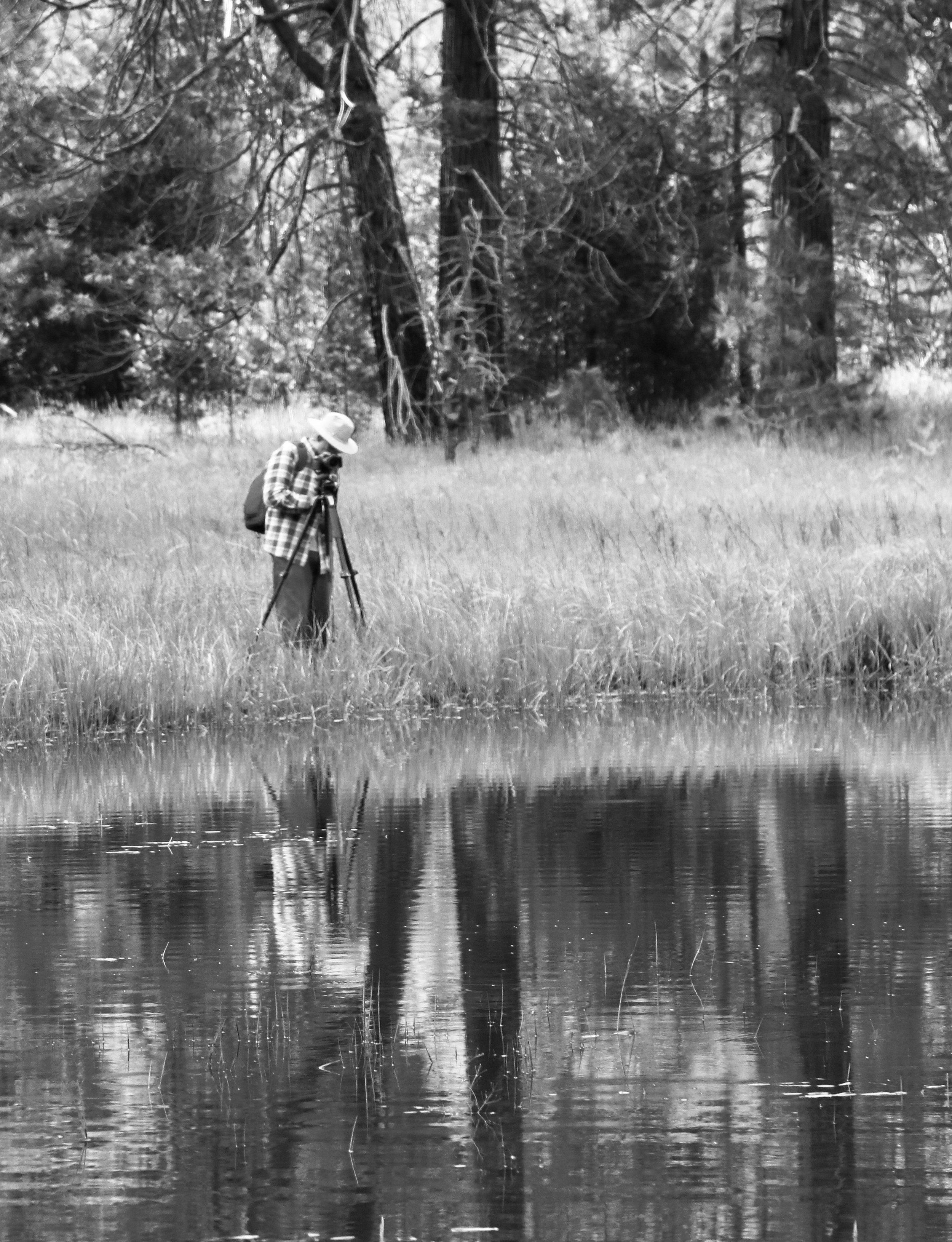 Capturing the Stillness of Morning - Yosemite