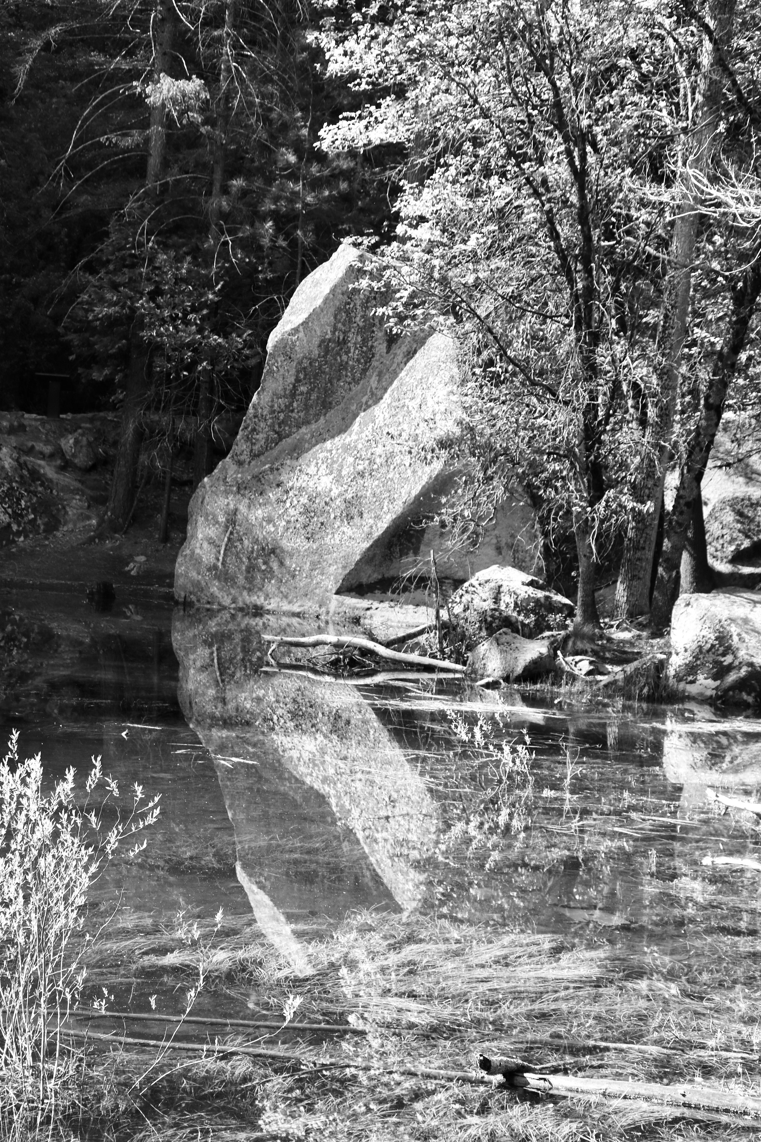Reflections on Mirror Lake - Yosemite