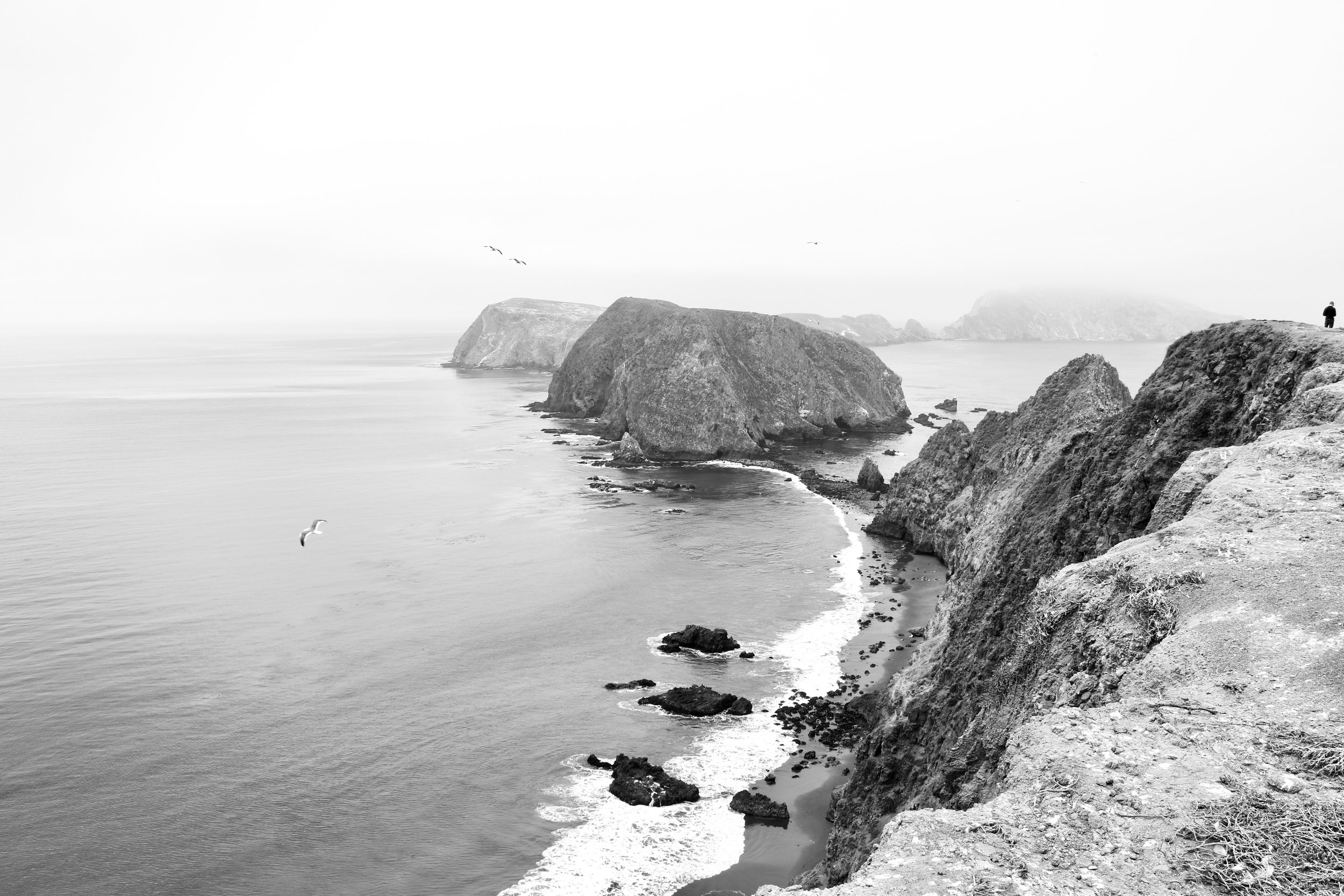 Man Versus Nature - Anacapa Island, Channel Islands