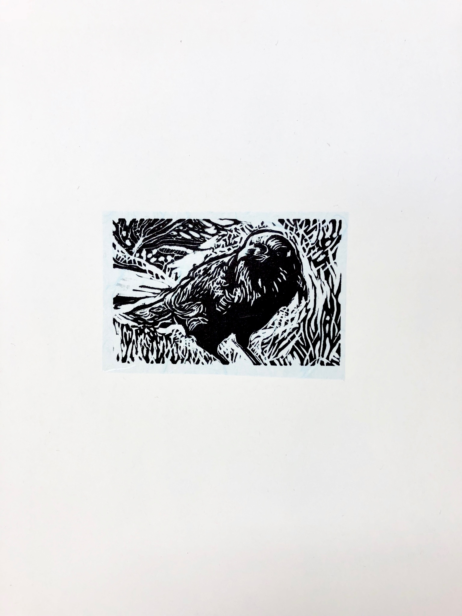 Encounter on the Path, Raven - Sequoia National Park - woodcut print