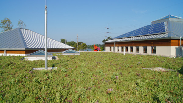 Nicholas-Green-Roof1.JPG