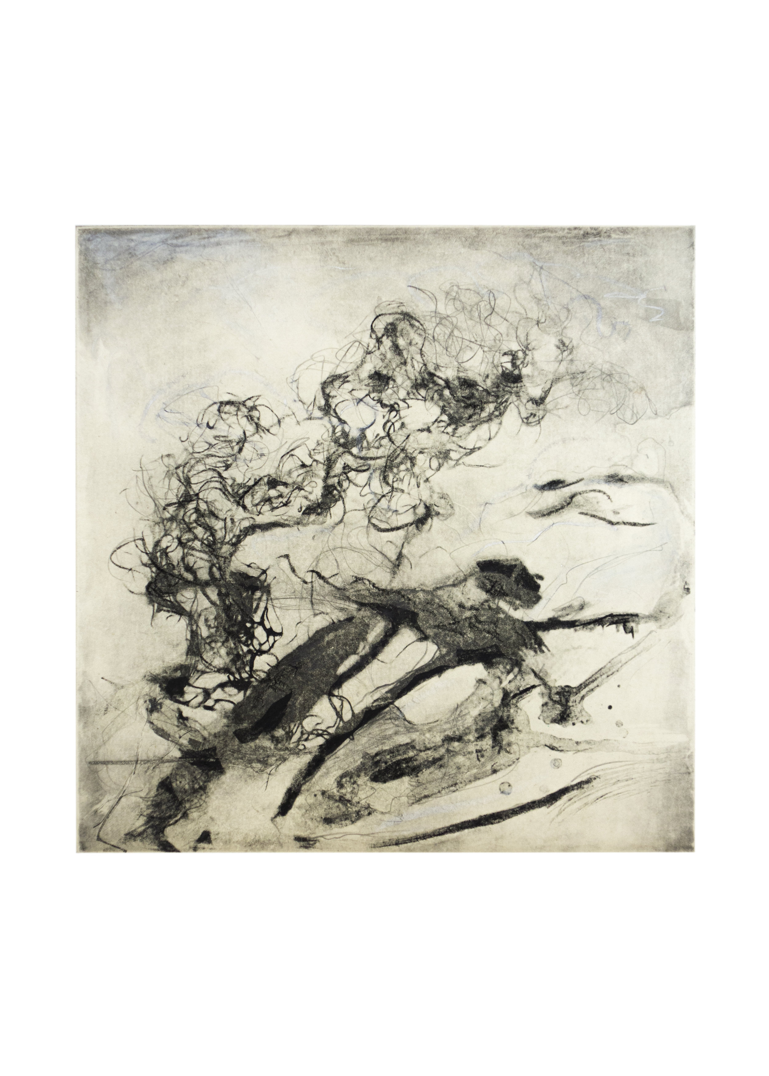 """Beach Forest 6, copper plate etching, image: 14-1/2"""" x 9-1/2"""""""