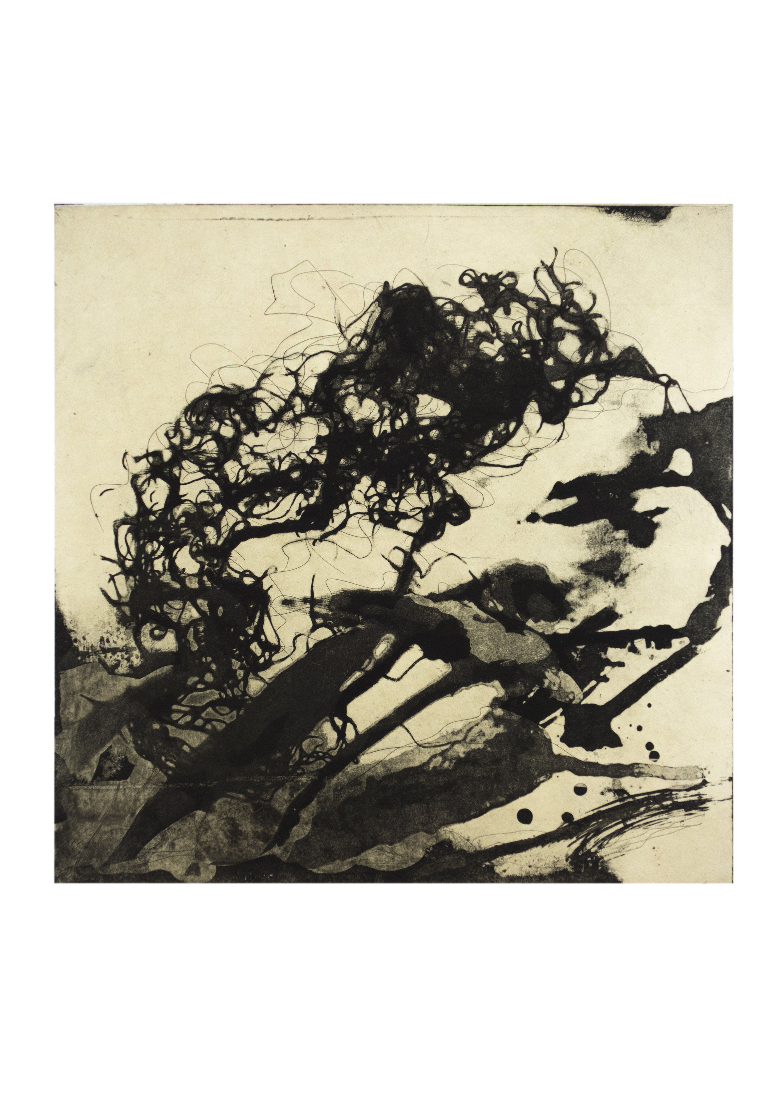 """Beach Forest 3, copper plate etching, image: 11-1/2"""" x 9-1/2"""""""