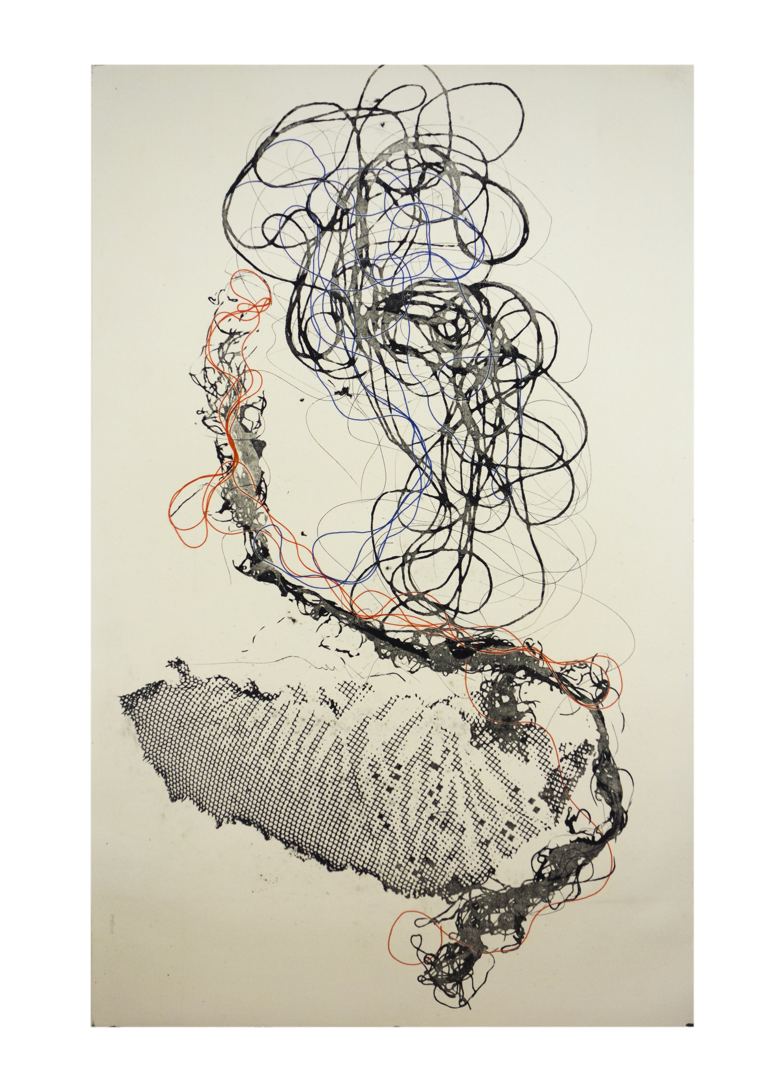 """Sea Creature 5, copper plate etching, image: 16"""" x 10"""""""