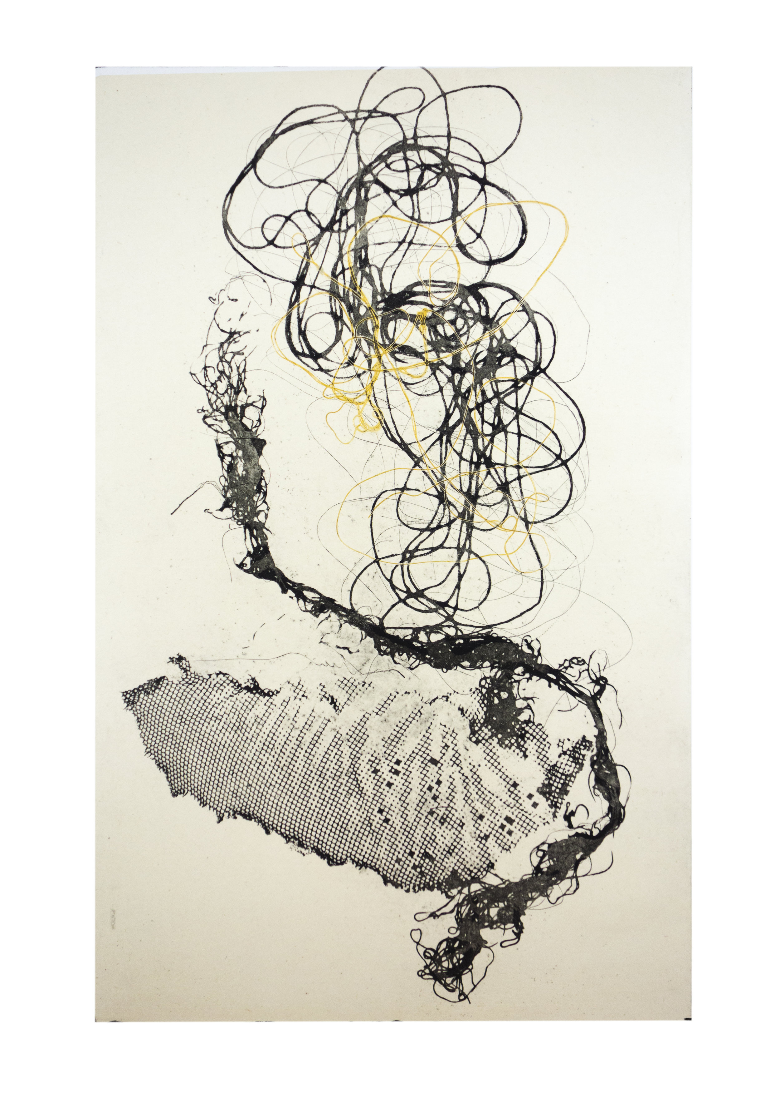 """Sea Creature 4, copper plate etching, image: 16"""" x 10"""""""